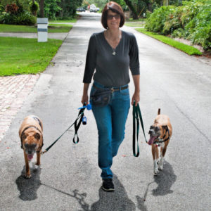 dog walker Palmetto, Kendall, Pinecrest, FL