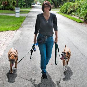 dog walker Palmetto, Kendall, Pinecrest, FL